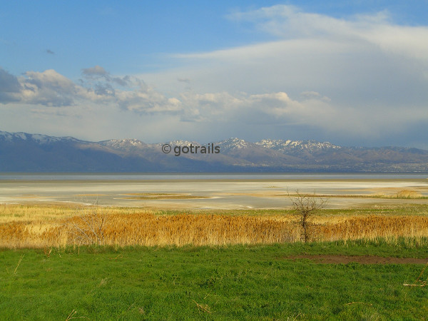 Combined view of meadow, yellow grass, lake, snowcapped mountains, and cloudy sky